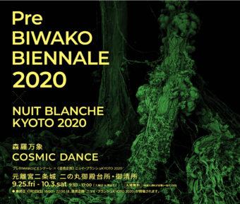 「プレBIWAKOビエンナーレ2020」「ニュイ・ブランシュKYOTO 2020」